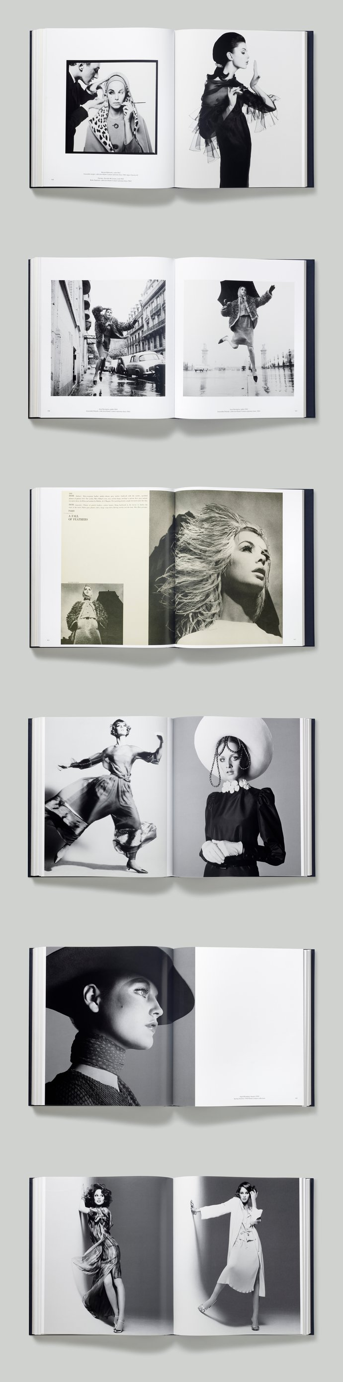 Dior/Rizzoli – Dior by Avedon, 2015 (Publication), image 5