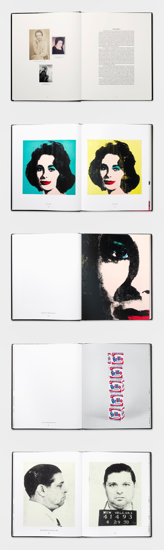 Gagosian – Warhol from the Sonnabend Collection, 2009 (Publication), image 3
