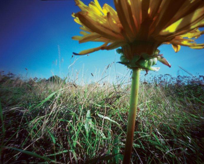 Habitat – Spring/Summer 2003: Supernature collection, 2002 (Retail), image 2