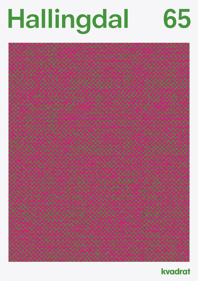 Kvadrat – Hallingdal 65, 2012 (Campaign), image 2