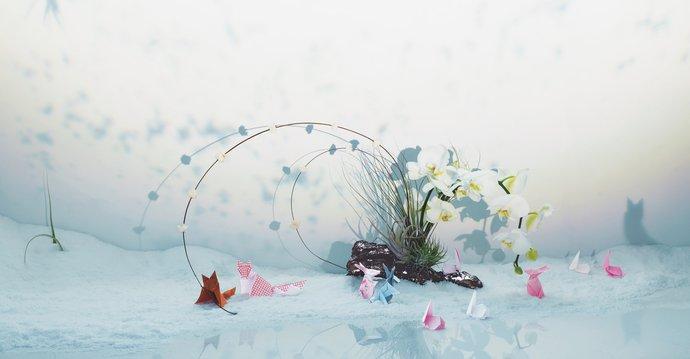 Oki Nami – Identity, 2008, image 6